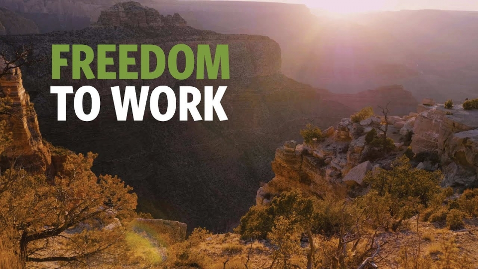 Universal Licensing Recognition: Arizona Becoming The First State Ensuring The Freedom To Work